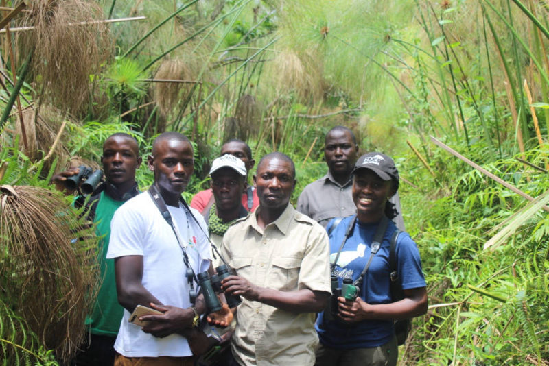 Monitors at Bigodi Wetland